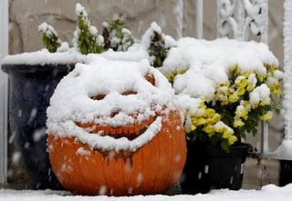 snowy_pumpkin.jpg